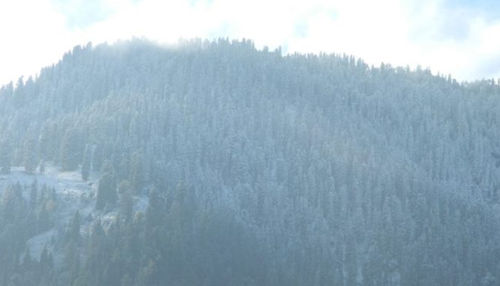 Snowfall at Hatu peak